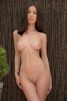 A sexy brunette with incredible looking tits posing naked